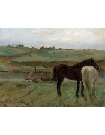 Reprodukcje obrazów Horses in a Meadow - Edgar Degas
