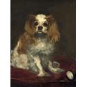 Reprodukcje obrazów A King Charles Spaniel - Edouard Manet