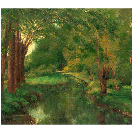 A Brook in a Clearing