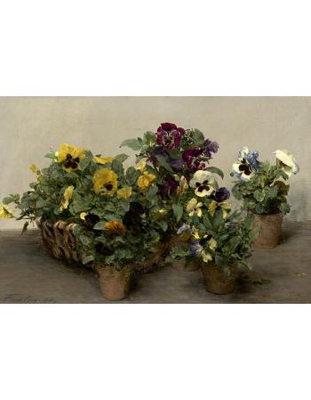 Reprodukcje obrazów Pansies - Henri Fantin-Latour