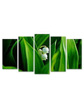 Ukrywające się kwiaty