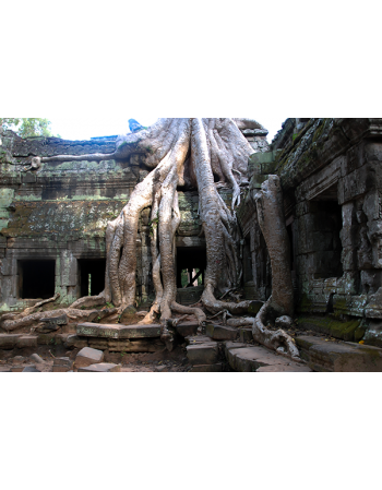Wyjątkowa świątynia Angkor