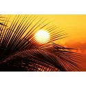 Zachód Słońca w tropikach