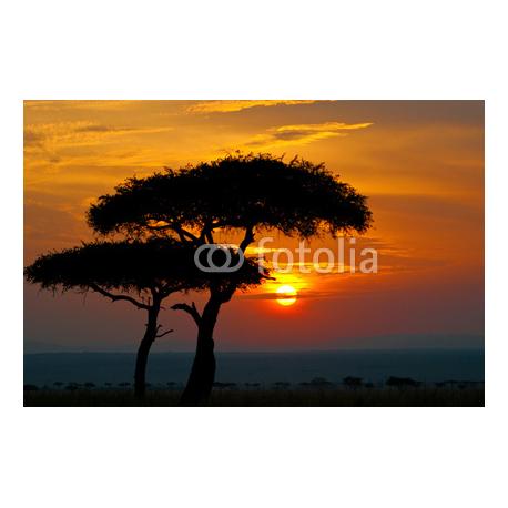 Zachód Słońca, Afryka
