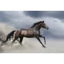 Biegnący Koń