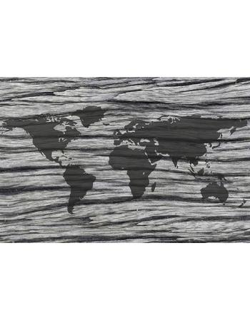 Wyjątkowa mapa świata