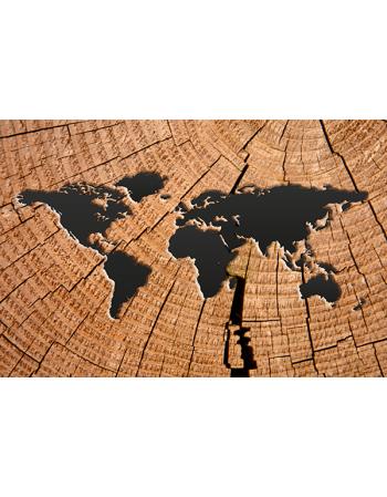 Mapa świata na drewnie