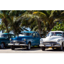 Amerykańskie samochody pod palmą