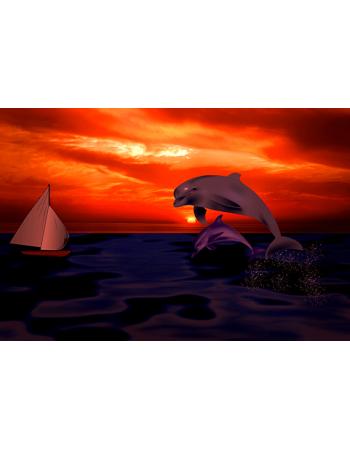 Skaczące Delfiny