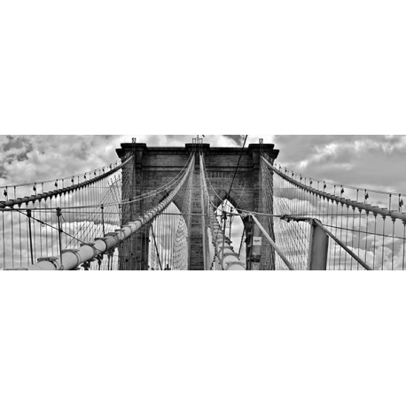 Most Brooklyn Bridge