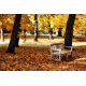 Ławka w parku - Jesień