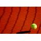 Obraz na płótnie piłeczka tenisowa przy siatce