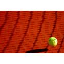 Piłeczka tenisowa przy siatce