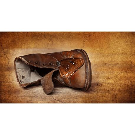Obraz na płótnie stary but