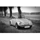 Obraz na płótnie Piękny garbus - VW