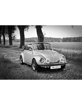 Piękny garbus - VW