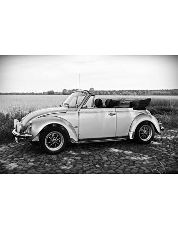Obraz na płótnie Stylowy garbus - VW