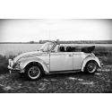 Stylowy garbus - VW