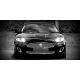 Obraz na płótnie Jaguar