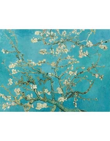 Reprodukcje obrazów Vincent van Gogh Almond Blossom