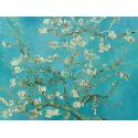 Reprodukcje obrazów Almond Blossom - Vincent van Gogh