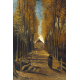 Reprodukcje obrazów Vincent van Gogh Avenue of poplars in autumn