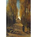 Reprodukcje obrazów Avenue of poplars in autumn - Vincent van Gogh