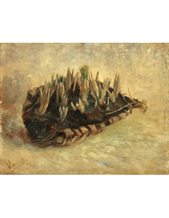 Reprodukcje obrazów Vincent van Gogh Basket of Crocus Bulbs