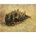 Reprodukcje obrazów Basket of Crocus Bulbs - Vincent van Gogh