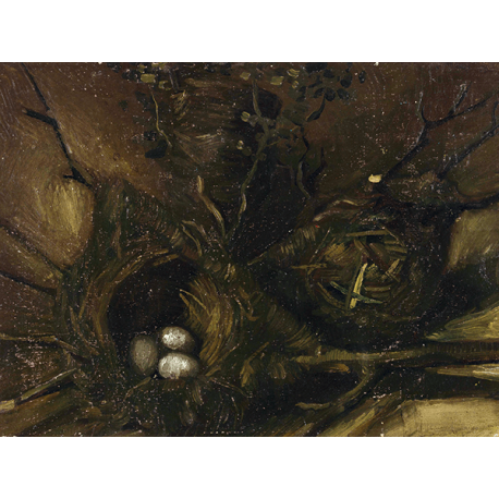 Reprodukcje obrazów Vincent van Gogh Birds' Nests