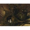 Reprodukcje obrazów Birds' Nests - Vincent van Gogh