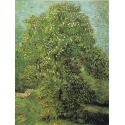 Reprodukcje obrazów Blossoming Chestnut Tree - Vincent van Gogh