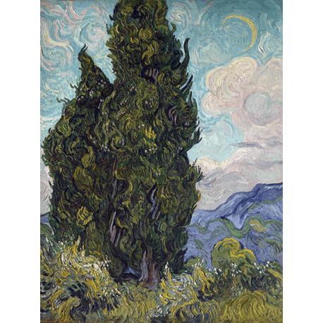 Reprodukcje obrazów Vincent van Gogh Cypresses