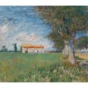 Reprodukcje obrazów Farmhouse in a Wheatfield - Vincent van Gogh