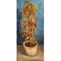 Reprodukcje obrazów Flame Nettle in a Flowerpot - Vincent van Gogh