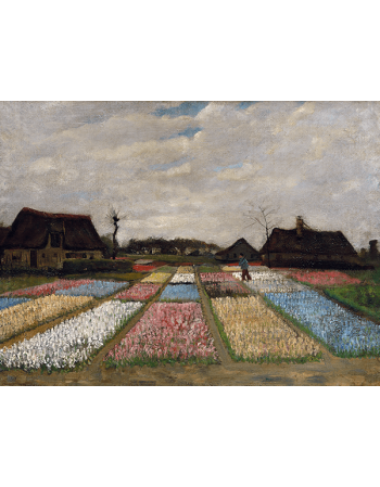 Reprodukcje obrazów Vincent van Gogh Flower Beds in Holland