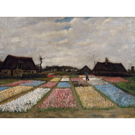 Reprodukcje obrazów Vincent van Gogh Flower Beds in Holland