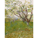 Reprodukcje obrazów Vincent van Gogh Flowering Orchards