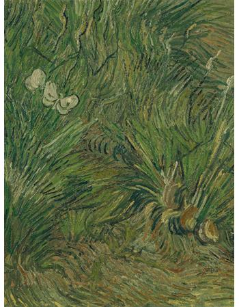 Reprodukcje obrazów Vincent van Gogh Garden with Butterflies