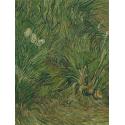 Reprodukcje obrazów Garden with Butterflies - Vincent van Gogh