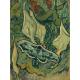 Reprodukcje obrazów Vincent van Gogh Giant Peacock Moth