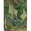 Reprodukcje obrazów Giant Peacock Moth - Vincent van Gogh