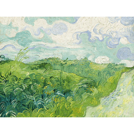 Reprodukcje obrazów Vincent van Gogh Green Wheat Fields