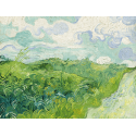 Reprodukcje obrazów Green Wheat Fields - Vincent van Gogh