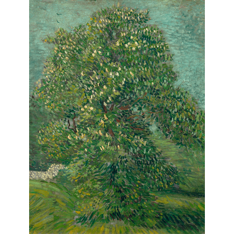 Reprodukcje obrazów Vincent van Gogh Horse Chestnut Tree in Blossom