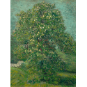 Reprodukcje obrazów Horse Chestnut Tree in Blossom - Vincent van Gogh