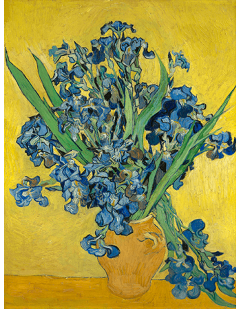 Reprodukcje obrazów Irises - Vincent van Gogh