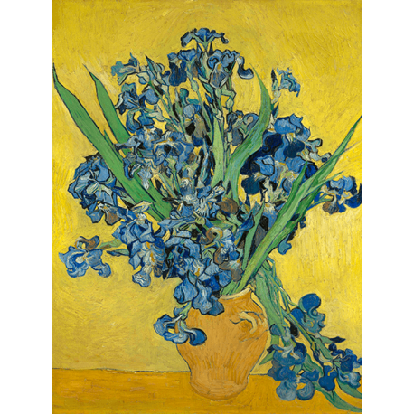 Reprodukcje obrazów Vincent van Gogh Irises