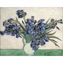 Reprodukcje obrazów Irises 2 - Vincent van Gogh