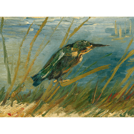 Reprodukcje obrazów Vincent van Gogh Kingfisher by the Waterside